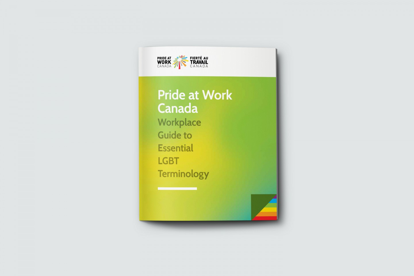 Pride at work Guidelines book Cover
